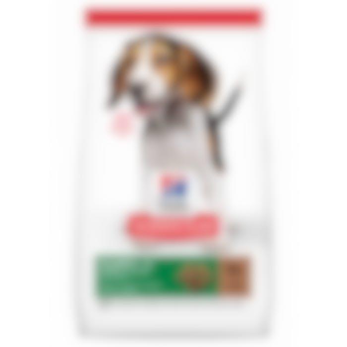 Hill's Science Plan Puppy croquettes pour chiot Medium à l'agneau et riz