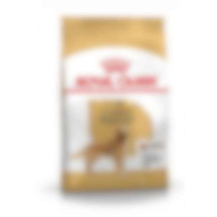 Royal Canin Golden Retriever Adult - 12Kg