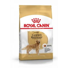 Royal Canin Golden Retriever Adult pour chien 12kg
