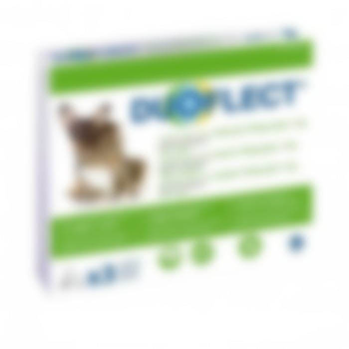 Duoflect Petit Chien (2-10Kg) et Grand Chat (>5Kg) 3 Pipettes