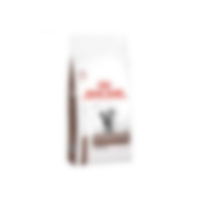 Royal Canin Gastrointestinal Hairball - pour chat - 4kg