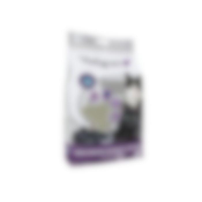 Cat Litter Bentonite Maximum Odour Control 12kg