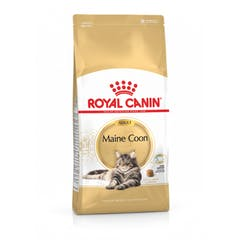 Royal Canin Maine Coon 31 pour chat 10kg