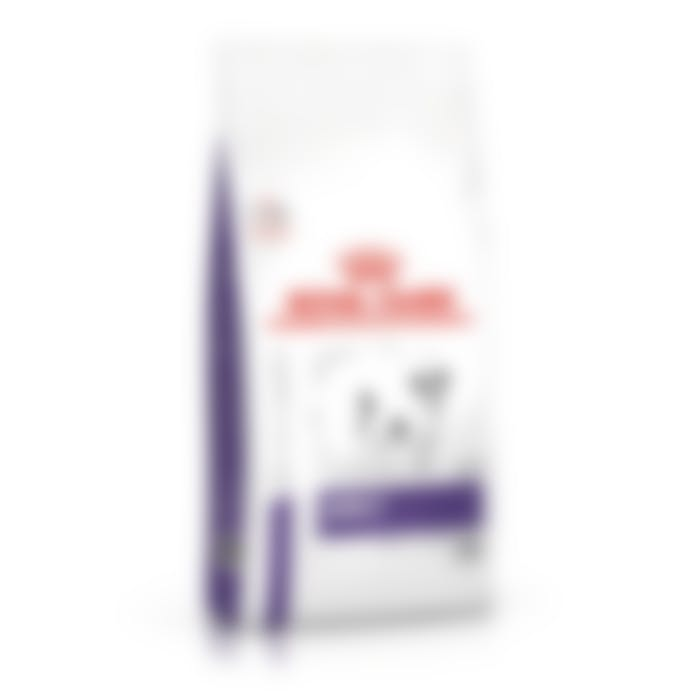 Royal Canin Chien Adult Small Dog