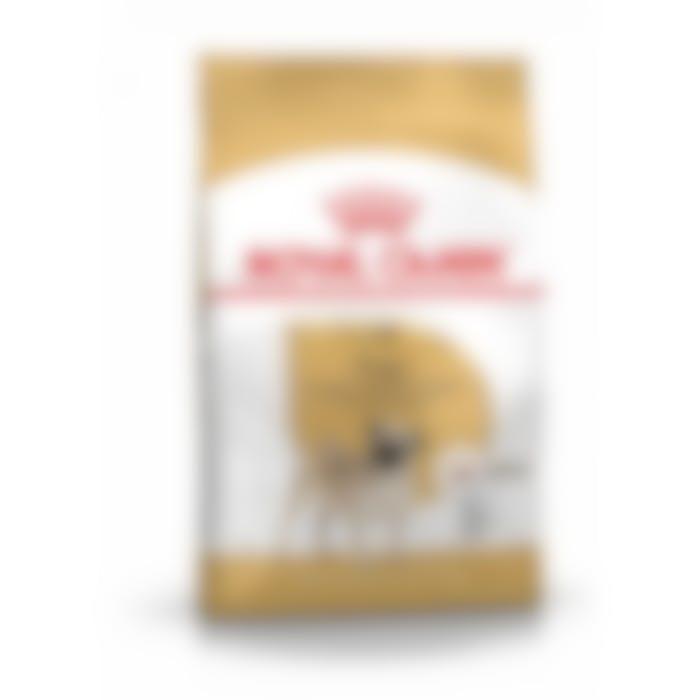 Royal Canin Pug pour chien 3kg