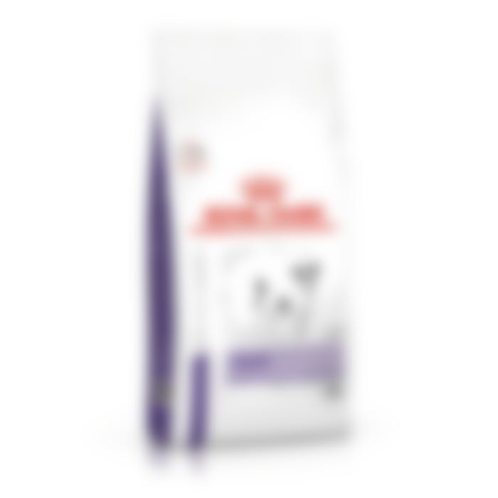 Royal Canin calm chien