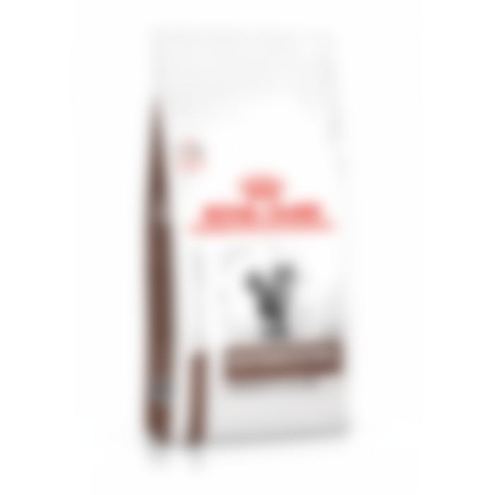 Royal Canin Gastro Intestinal Moderate Calorie Chat 400g