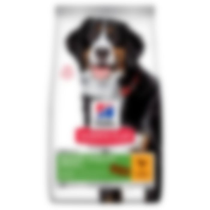 Hill's Science Plan 7+ Youthful Vitality Medium Pour Chien 14kg