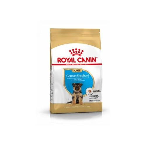 Royal Canin Berger Allemand (German Shepherd) Puppy  12Kg