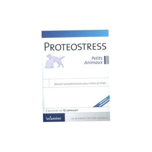 Proteostress petits animaux 3x12 Capsules