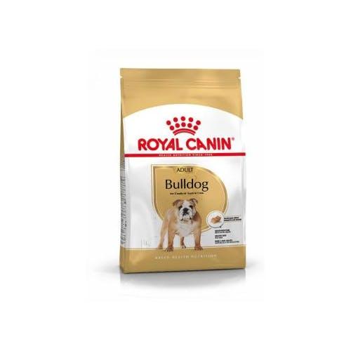 Royal Canin Bulldog Anglais Adult  12Kg