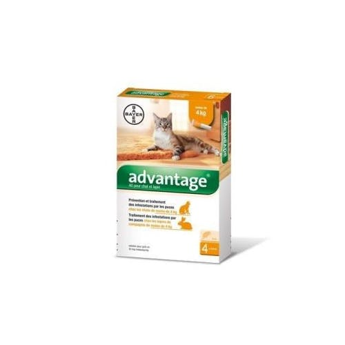 Advantage 40 chat et lapin de 1 à 4 kg