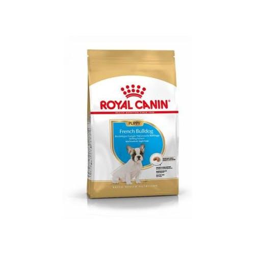 Royal Canin Bulldog Français Puppy  10Kg